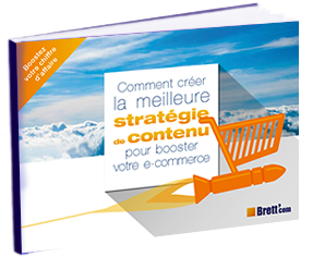 BRETTCOM e-book strategie de contenu